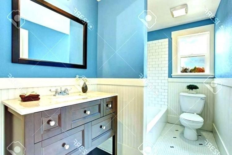 brown bathroom decorating ideas