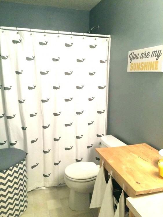 Kids Bathroom Ideas For Boys And Girls Boy And Girl Shared Bathroom Ideas  Little Boy Bathroom Ideas Dazzling Contemporary Kids Bathroom House Designs  Boy